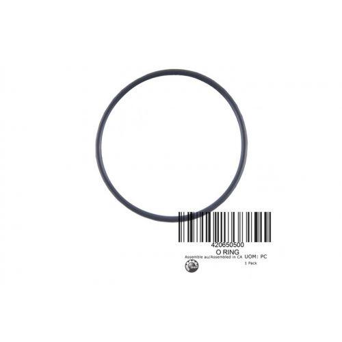 Уплотнительное кольцо O RING  BRP